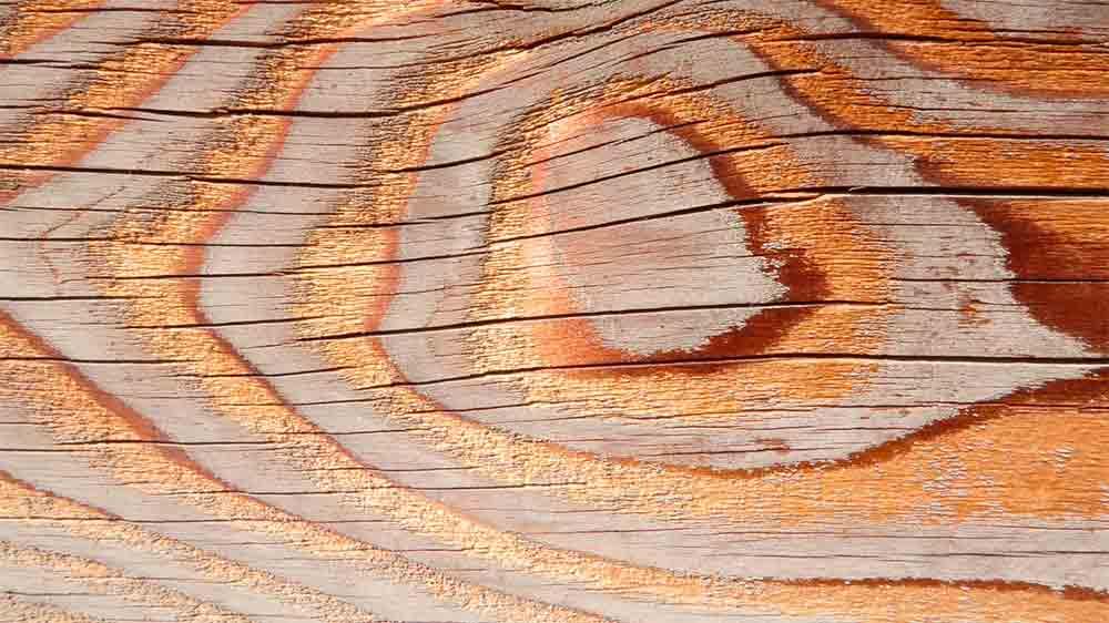 Limpieza de muebles de madera affordable la luz y la - Limpiar muebles madera ...